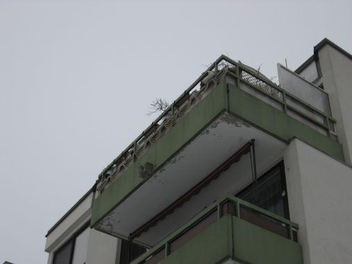 Wasserschaden Balkon und Fenster